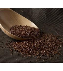 Quinoa Roja a granel