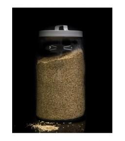 Lino dorado ECOLÓGICO a granel
