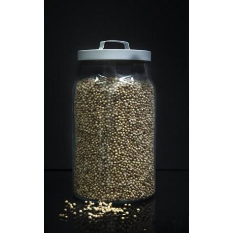 Cilantro en grano a granel